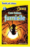 Cum traiesc furnicile - National Geographic Kids - Invat sa citesc nivelul 2