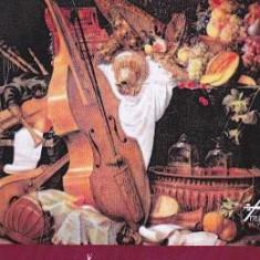 Baroccoco pentru ansamblu baroc - Cornel Taranu - Carte amenajari interioare