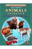 Animale salbatice din tinuturile noastre - Cartonase - Silvia Ursache, Silvia Ursache
