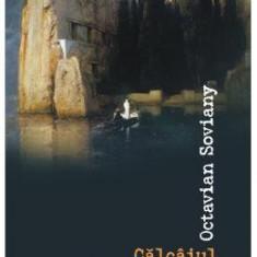 Calcaiul lui Magellan - Octavian Soviany