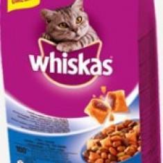 Whiskas Dry 1.4Kg Ton&Ficat - Hrana pisici