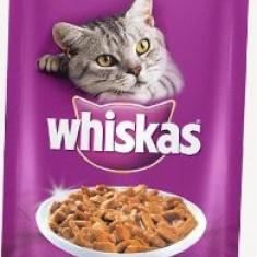 Whiskas plic 100g Somon - Hrana pisici