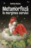 Metamorfoza la marginea cerului - Mathias Malzieu