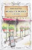 Moara cu noroc si alte povestiri - Ioan Slavici