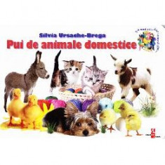 Pui de animale domestice - Silvia Ursache-Brega - Carte educativa