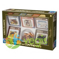 Joc Animale din continente Set 5 carti+figurine - Joc colectie