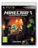 Minecraft (PS3), Sony