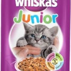 Whiskas plic 100g Junior - Hrana pisici