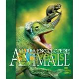Marea enciclopedie: Animalele. Ghid ilustrat complet