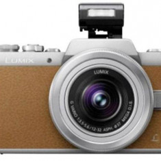 Aparat Foto Mirrorless Panasonic DMC-GF7KEG-T, cu Obiectiv LUMIX G VARIO 12-32 mm/F3.5-5.6 ASPH. /MEGA O.I.S, 16 MP, Wi-Fi (Maro/Argintiu)
