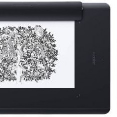 Tableta grafica Wacom Intuos Pro Paper Medium, North, Model 2017 (Negru) - Cartela Cosmote