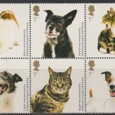 ANGLIA-Marea Britanie 2010-bloc de 10 timbre caini si pisici,nou,nestampilat