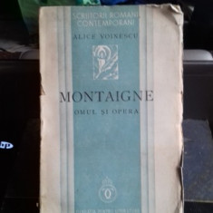 MONTAIGNE. OMUL SI OPERA - ALICE VOINESCU