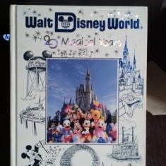 WALT DISNEY WORLD. 20 MAGICAL YEARS