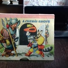 A CSIZMÁS KANDÚR - CARTE PENTRU COPII CU DESENE 3D (MOTANUL INCALTAT)
