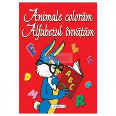 Carte de colorat cu alfabet