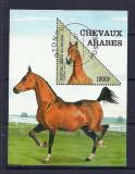 BENIN 1997 – CAI RASA ARABA, colita stampilata, TR64, Stampilat