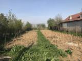 Teren intravilan Ciolpani satul Piscu