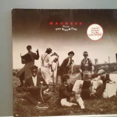 MADNESS - THE RISE & FALL (1982/DECCA/RFG) - Vinil/Impecabil - Muzica Rock Teldec