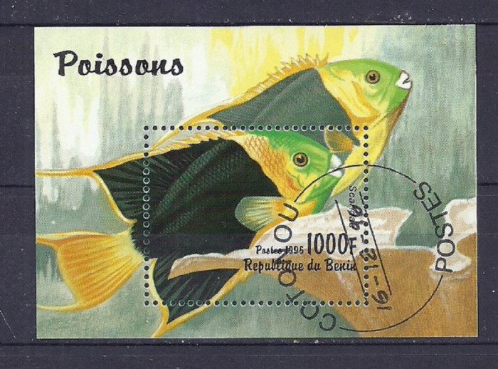 BENIN 1996 – PESTI DE ACVARIU, colita stampilata, TR117