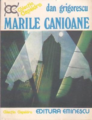 DAN GRIGORESCU - MARILE CANIOANE foto