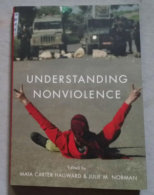 Understanding nonviolence / Eds. Maia Carter Hallward and Julie M. Norman. foto