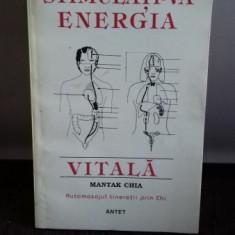 STIMULATI-VA ENERGIA VITALA - MANTAK CHIA