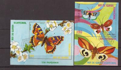 GUINEA ECUATORIALA  – FLUTURI EXOTICI, 2 colite stampilate, TR128 foto