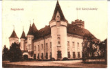 !!! RARR :  CAREI  -  CASTELUL  GROFULUI  KAROLY  -  CIRCULATA  1913, Printata