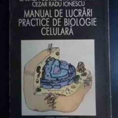 Manual De Lucrari Practice De Biologie Celulara - Constantin Cotrutz Carmen Cotrutz Maria Kocsis Cez, 542139 - Carte Biologie