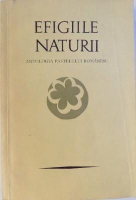 EFIGIILE NATURII, ANTOLOGIA PASTELULUI ROMANESC de PETRE STOICA, MIRCEA TOMUS , 1971 foto