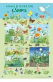 Plansa: Fauna si flora din campie