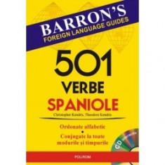 501 verbe spaniole polirom
