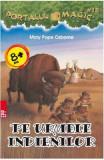 Portalul magic 18: Pe urmele indienilor - Mary Pope Osborne, Mary Pope Osborne