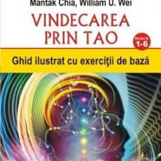 Vindecarea prin Tao. Nivelurile 1-6 - Mantak Chia, William U. Wei