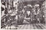Bnk cp Sinaia - Muzeul Peles - Sala de arme - necirculata, Printata