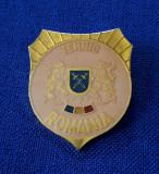 """Insigna militara - Armata Romaniei - """" Tehnic """""""