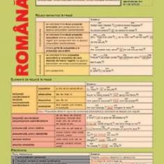 Plansa Limba romana clasa 8 - Manual scolar