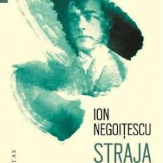 Straja dragonilor. Memorii 1921 - 1941 - Ion Negoitescu