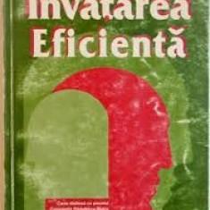 Ion jinga invatarea eficienta - Carte Psihologie