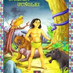 Cartea junglei - Carte educativa