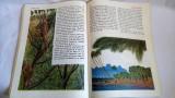 DD- DANIEL DEFOE - ROBINSON CRUSOE, Format mare, cu ilustratii, 1985