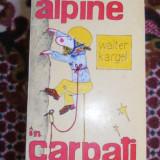 Trasee Alpine In Carpati