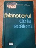 Falansterul de la Scaieni - I. Cojocaru Z. Ornea [1966]