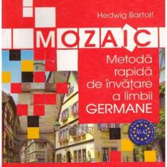 Mozaic - metoda rapida de invatare a limbii germane - Autor(i): Hedwig