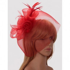 Red Mesh Hat Feather Fascinator - LSH00194