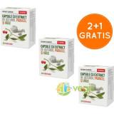Capsule Cu Extract De Usturoi, Paducel, Vasc 30cps 2+1 Gratis