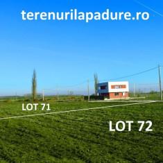 Crevedia- Casa cu Tei Rezidential - Teren de vanzare, 500 mp, Teren intravilan