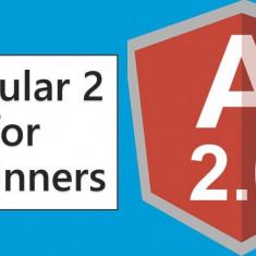 32 de cursuri angular audio si video high quality - Curs IT & C