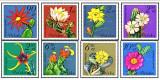 Polonia 1981 - flori de cactus, serie neuzata